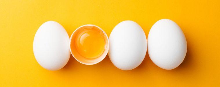 eiwit-waarom-belangrijk